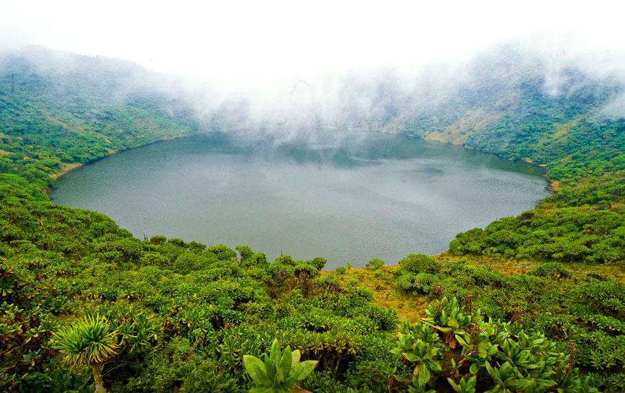 volcanoes-national-park.jpg