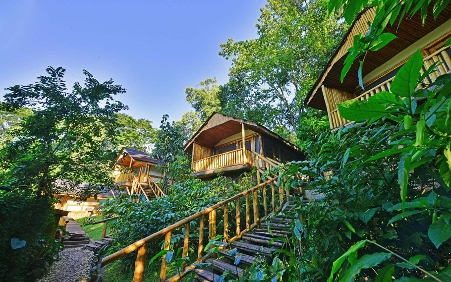 Buhoma-Community-Haven-Lodge.jpg