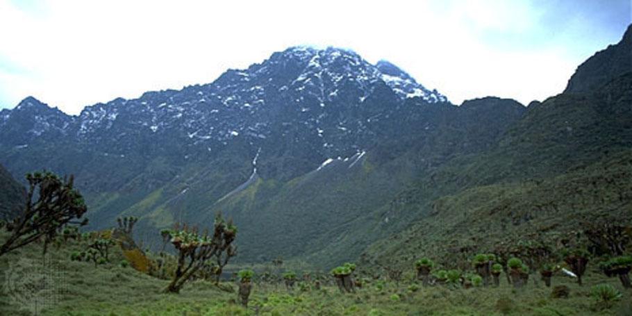 Rwenzori-mountains-peak.jpg