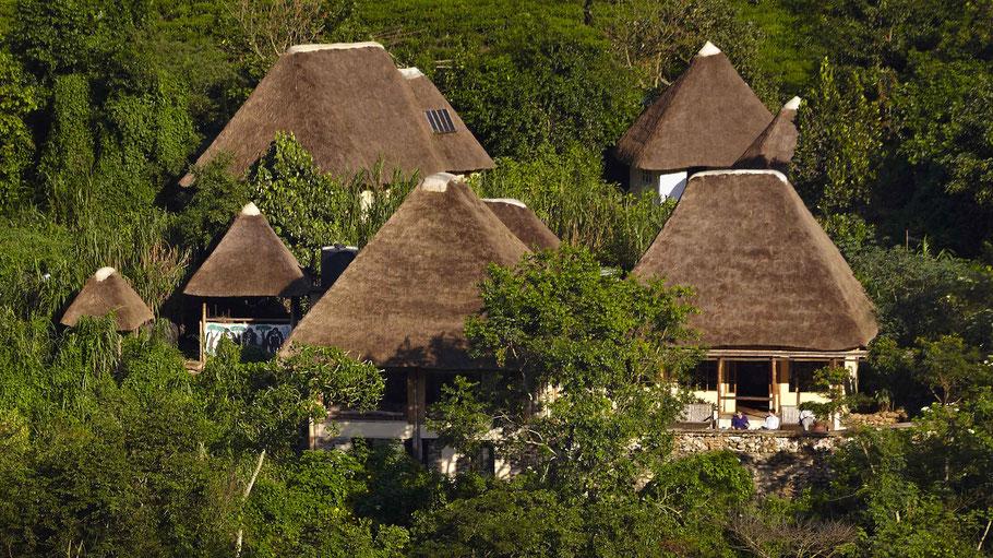 Volcanoes-Bwindi-Lodge-Uganda.jpg