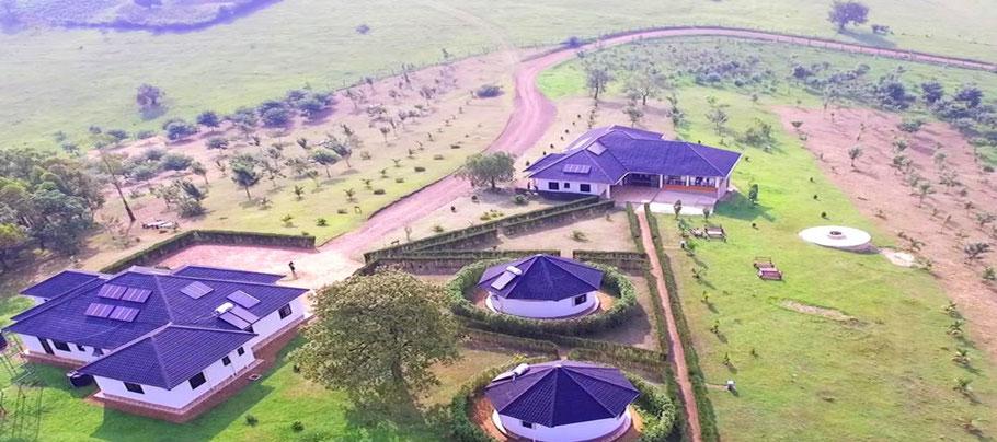 Crested-Crane-Bwindi-Hotel.jpg