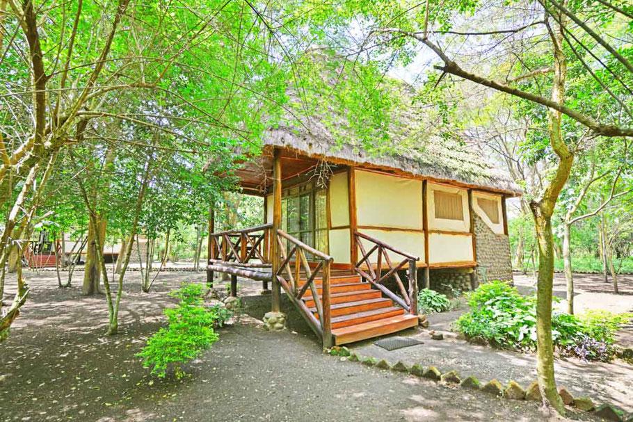 Ishasha-jungle-lodge.jpg