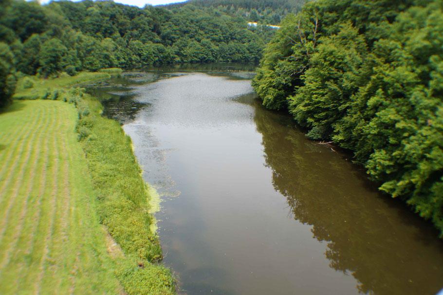 Zufluss der Prüm in den Stausee Bitburg
