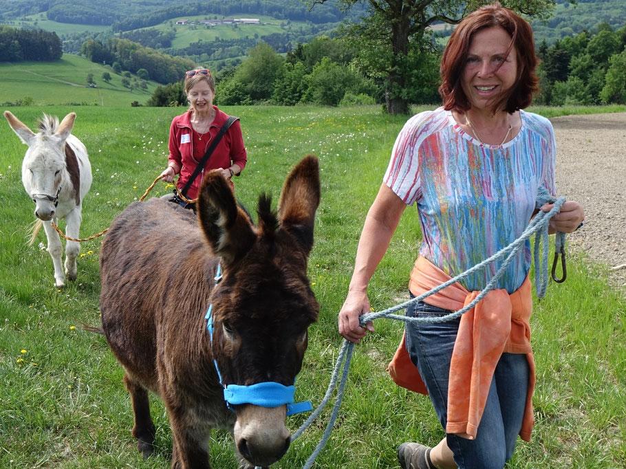 Eselwanderrn im Wienerwald