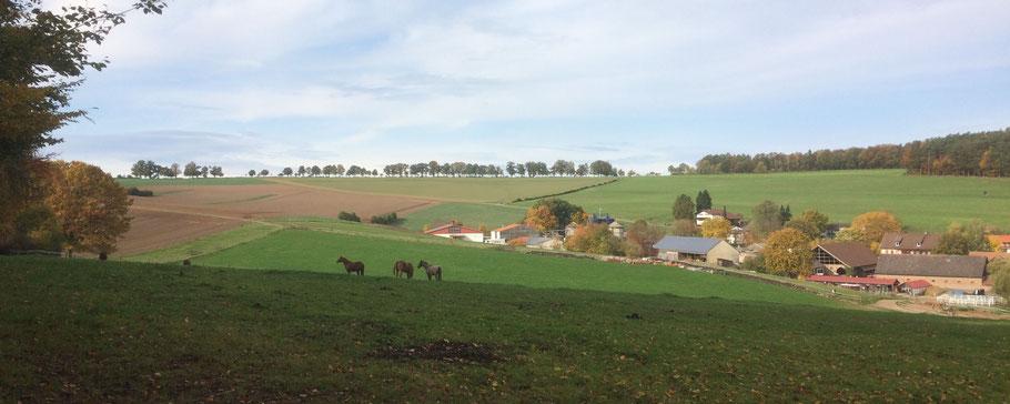 Mossautal, Herbst 2020