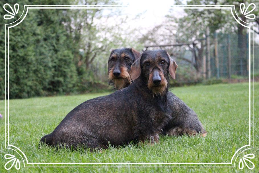 Elli und Mabel von Dannen
