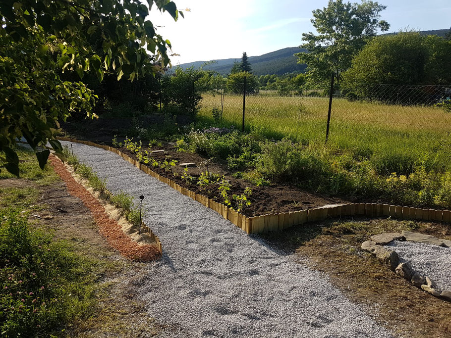 Der Kräutergarten Von Waldi Wiese Wegesrand Ist Im Werden