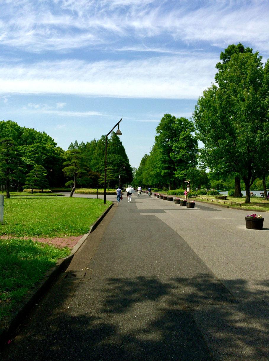 Mizumoto Park, Katsushika, Tokyo.