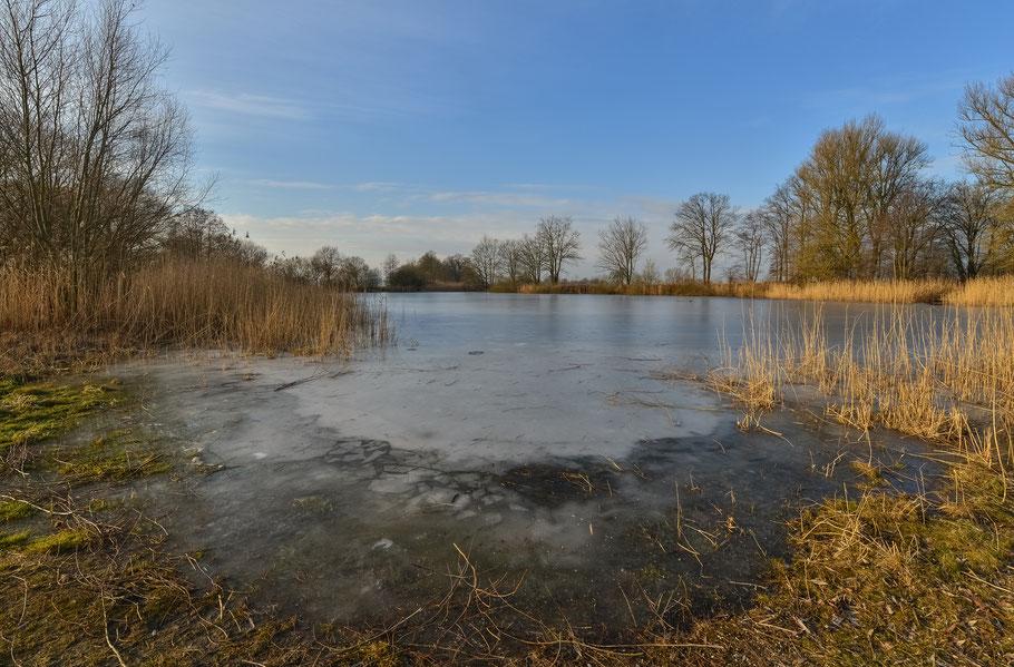 Der zugefrorene Weiher in Predöhlsau ...