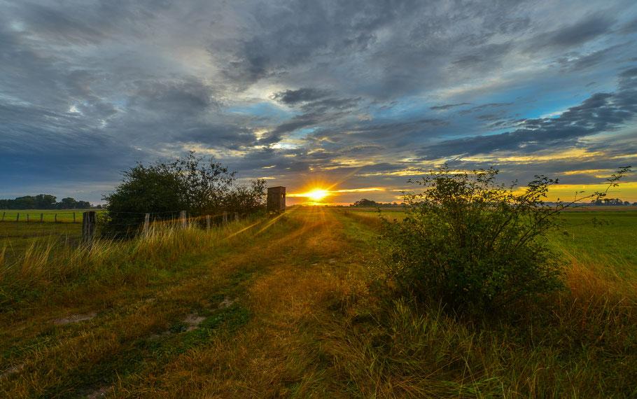 Sonnenaufgang auf einem Feldweg zwischen Grabau und Seerau ...
