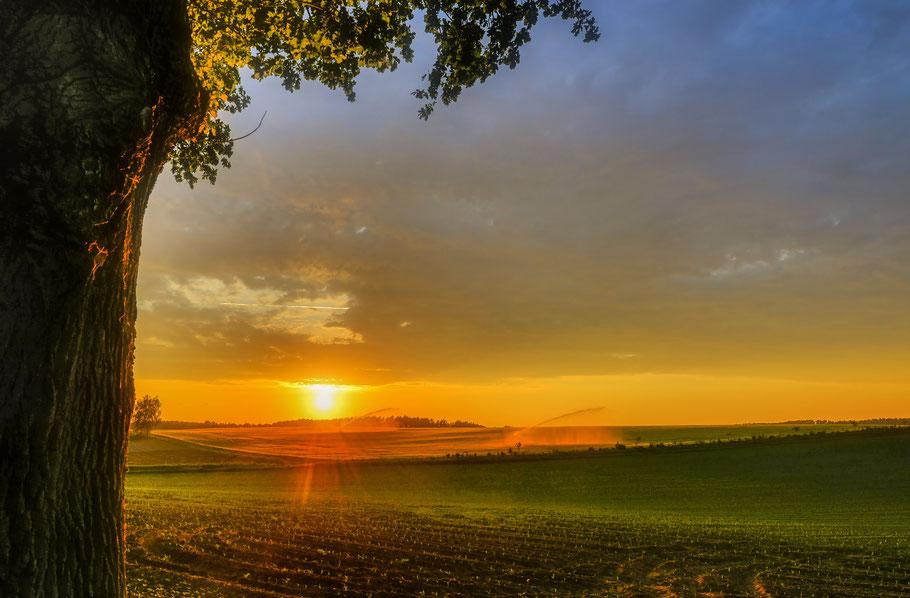Sonnenuntergang über den Feldern bei Hitzacker an der Elbe