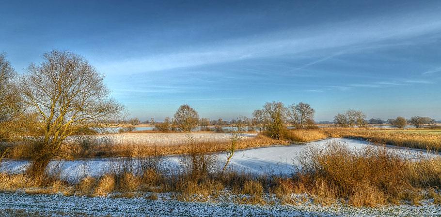 Winter an der Elbe zwischen Hitzacker und Wussegel