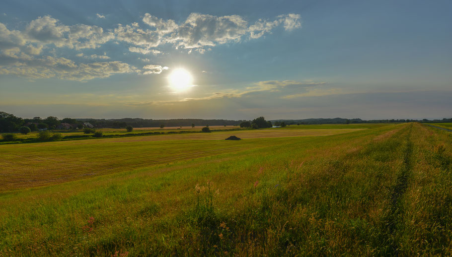 Sommerliche Abendstimmung in der Jeetzelniederung zwischen Seerau und Hitzacker an der Elbe