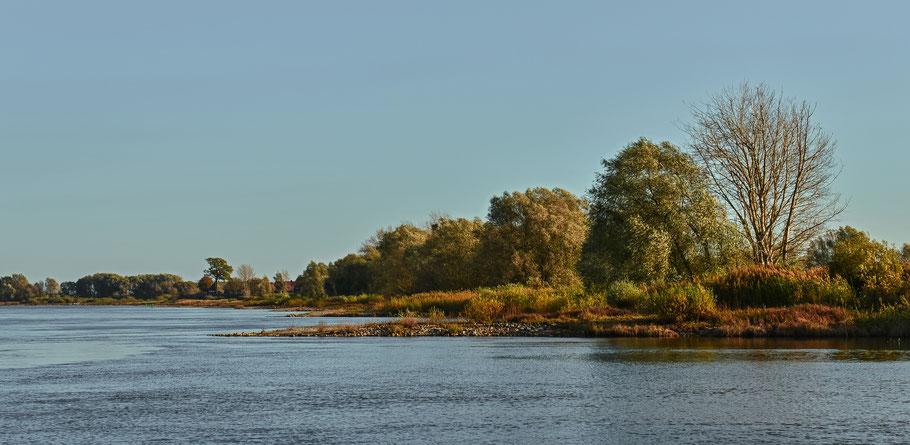 Spätsommer an der Elbe bei Wussegel