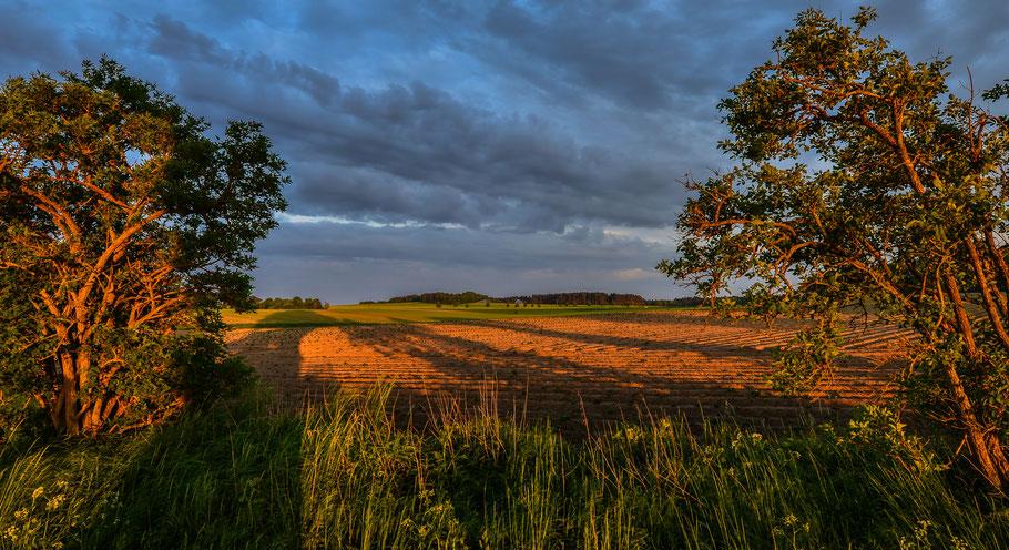 Zeit der langen Schatten ... Sonnenuntergang zwischen Hitzacker und Sarenseck