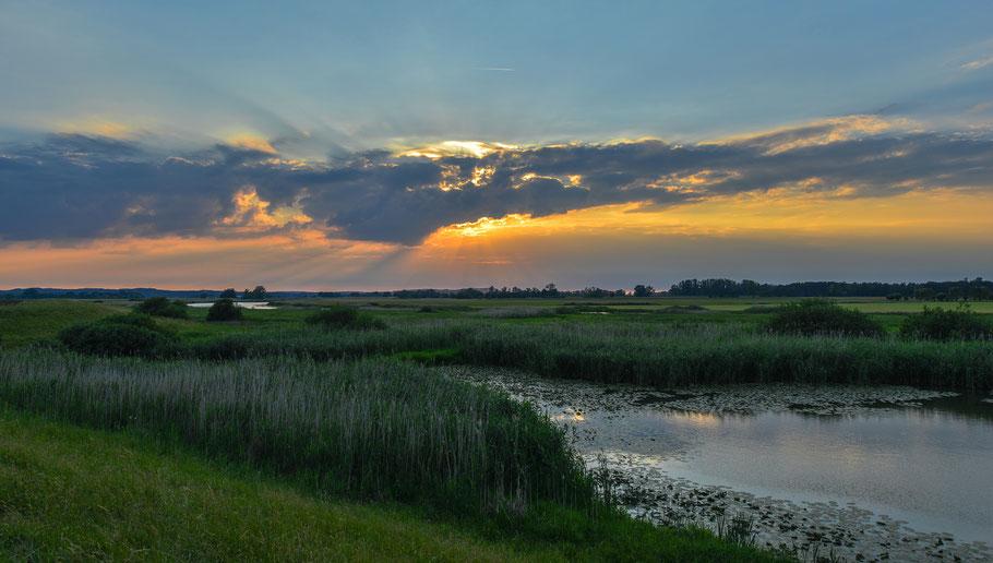 Ein Sommertag neigt sich dem Ende zu ... Abendstimmung an der Tauben Elbe bei Penkefitz