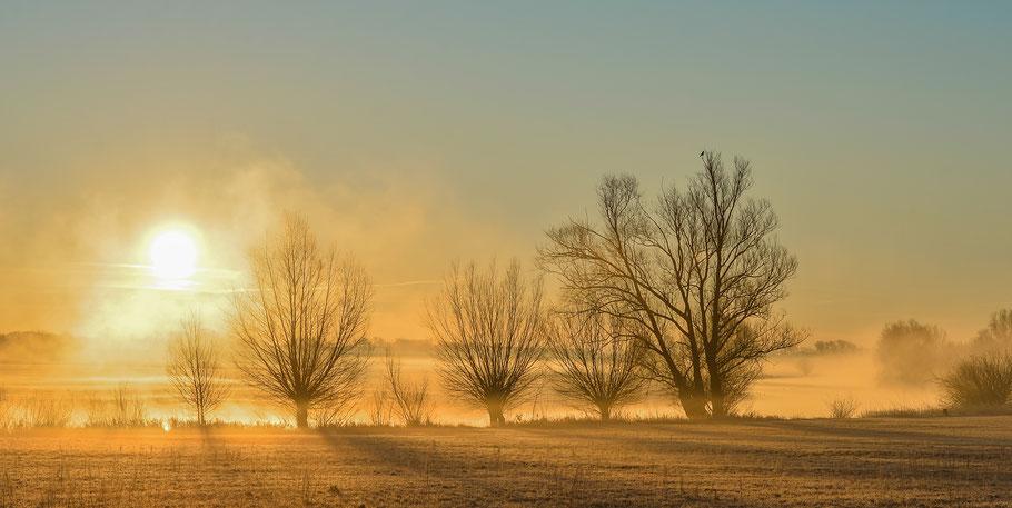 Sonnenaufgang in der Jeetzelniederung zwischen Hitzacker und Seerau