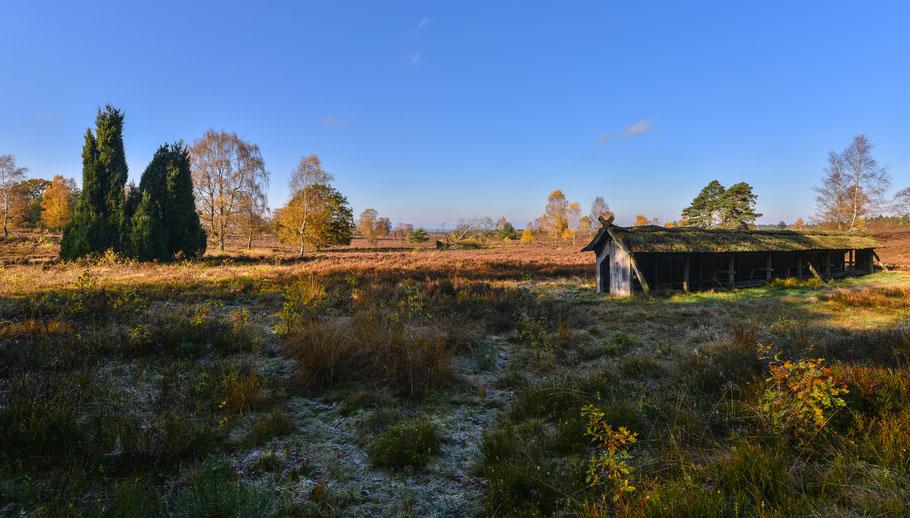 Ein Novembertag in der Heide ...