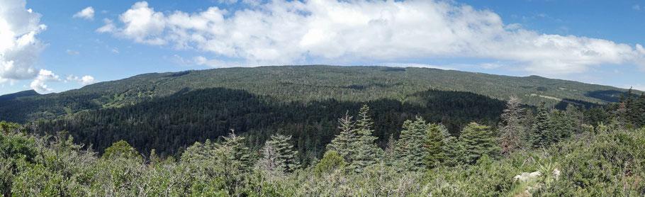 Capulin Peak, Sandia Mountains, Cibola National Forest, New Mexico