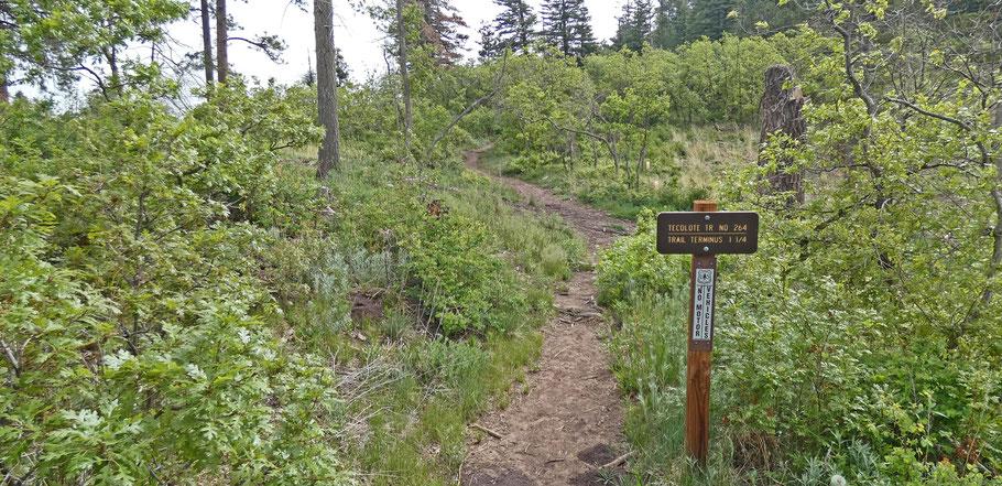 Tecolote Trail, Sandia Mountains, Cibola National Forest, New Mexico, hike, hiking