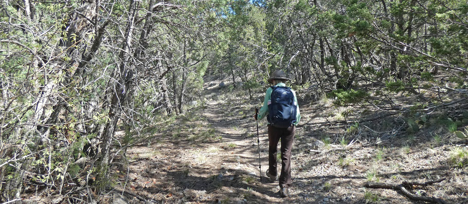 Faulty Trail, Sandia Mountains, Cibola National Forest, New Mexico