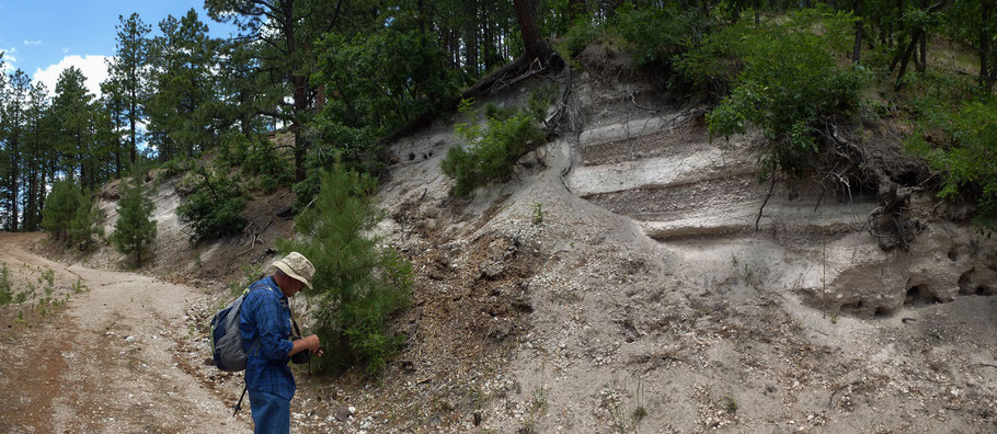 Pumice, geology, Valles Caldera National Preserve, Jemez Mountains