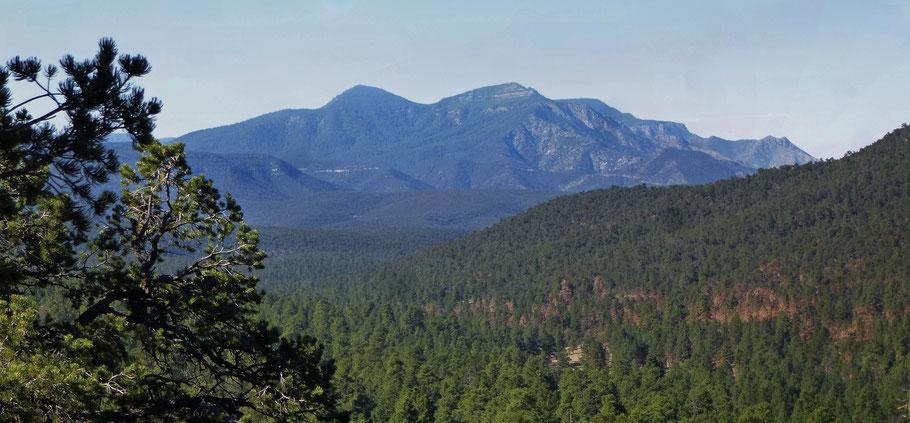 David Canyon, Manzanita Mountains, Manzano Mountains, Guadalupe Peak, Mosca Peak, Cibola National Forest, New Mexico