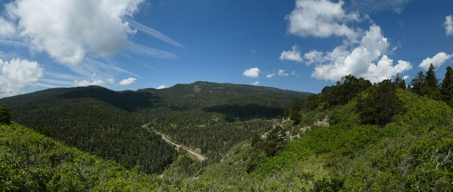 Cibola National Forest, New Mexico