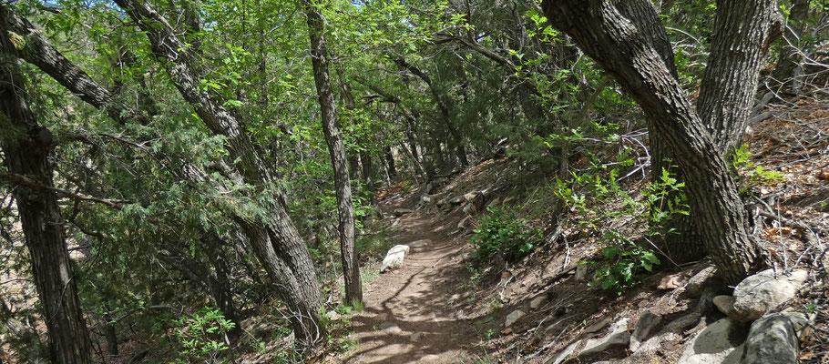 Ojito de San Antonio Open Space, Sandia Mountains, New Mexico