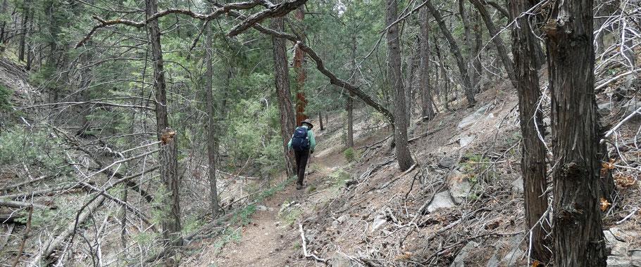 Casa Loma route, Sandia Mountains, Cibola National Forest, New Mexico