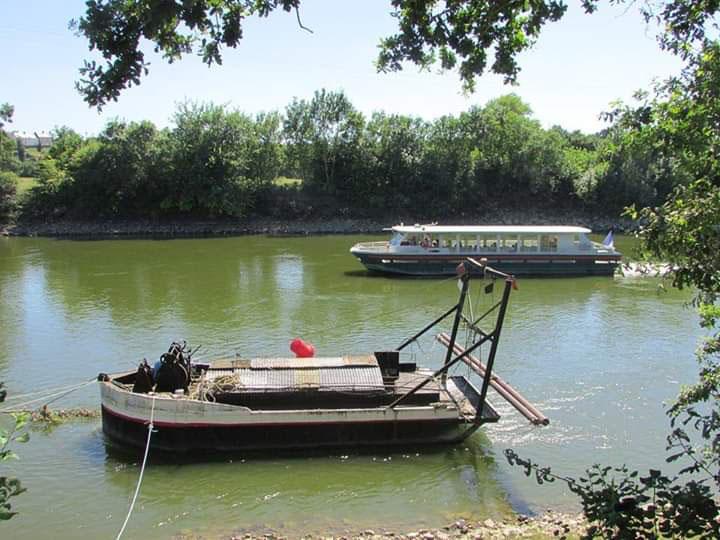 La Ligériade II qui navigue sur la Loire à Montjean sur Loire