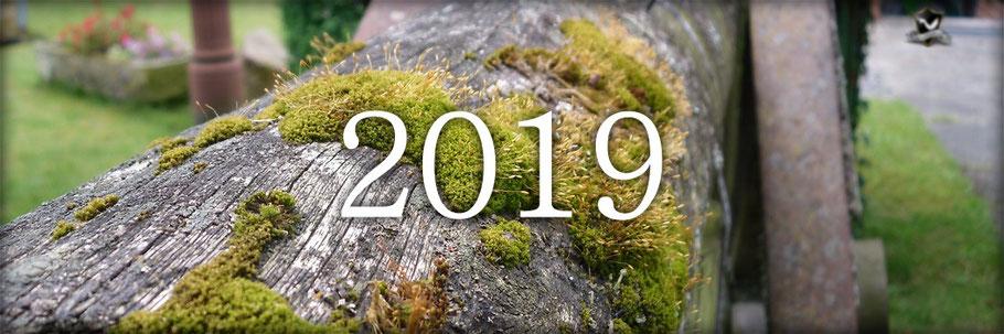 christlicher Blog, Bible-Blog 2019, Bibel-Blog