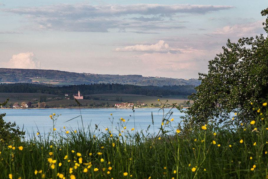 Ferienwohnung und Privatzimmer Riehle Litzelstetten Bodensee