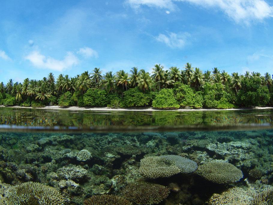 マーシャル諸島 マジェロ環礁の海 撮影:武本匡弘