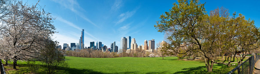 Central Park und Skyline New York City