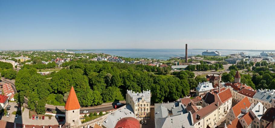 Panorama - Tallinn