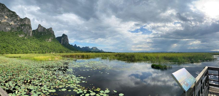 Das Schilfgebiet Bueng Bua in Sam Roi Yod zieht dich vor allem bei Dämmerung in seinen Bann.
