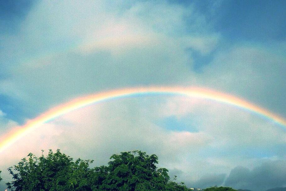 W Rainbow, Hawaii