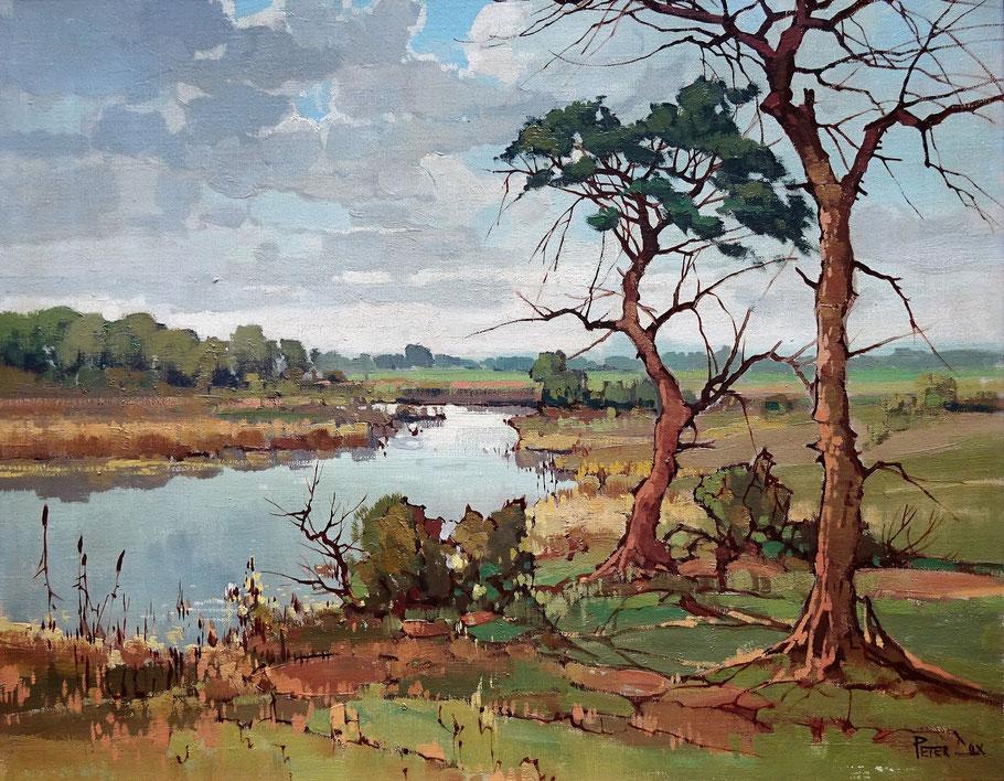 Peter Cox, kunstschilder. Schilderij waterrijk landschap te koop.