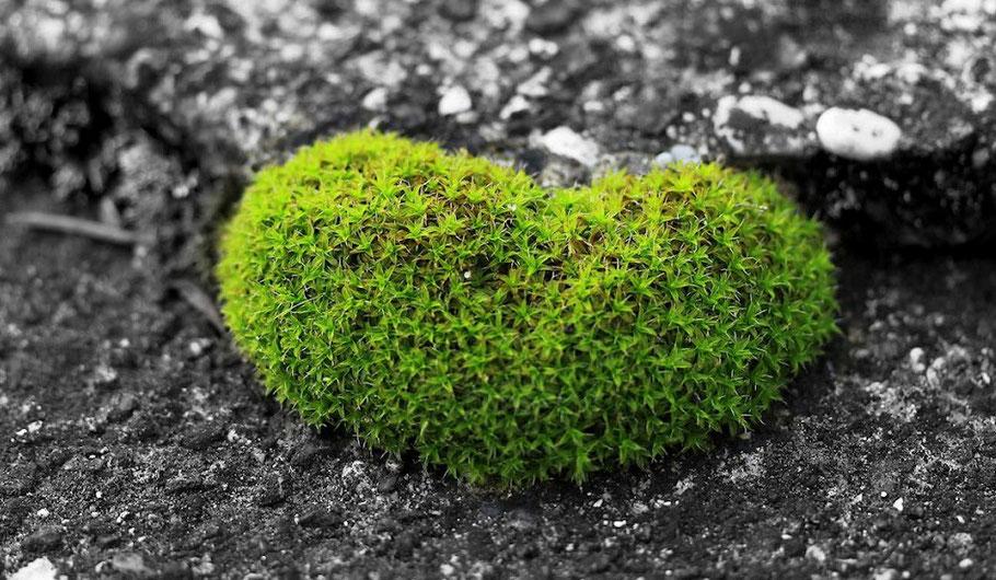 Was das Herz begehrt: Gutscheine my selbstbewusst verschenken.
