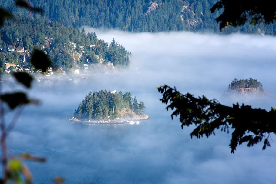 Kanada, Vancouver, Wald, Natur, Landschaftfotografie, der Beste Fotograf, Martin Matok, Nebel, Rüsselsheim am Main, Hessen, Fotografie, Fluss