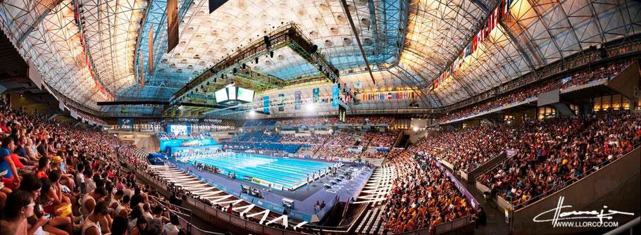 Barcelona 15th FINA WORD CHAMPIONSHIP, Palu Sant Jordi