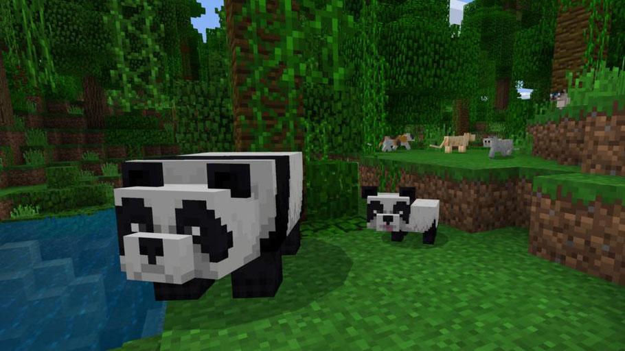 Minecraft Test: Die Spielmodi