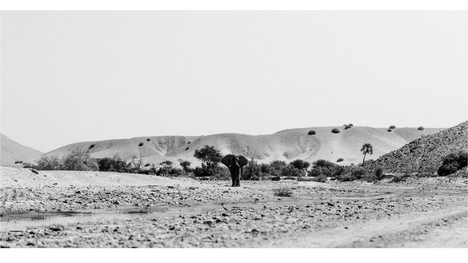 NAMIBIA - zwischen Windhoek und Kaokoland - Fotoreportage von Dirk Brzoska Fotografie aus Leipzig