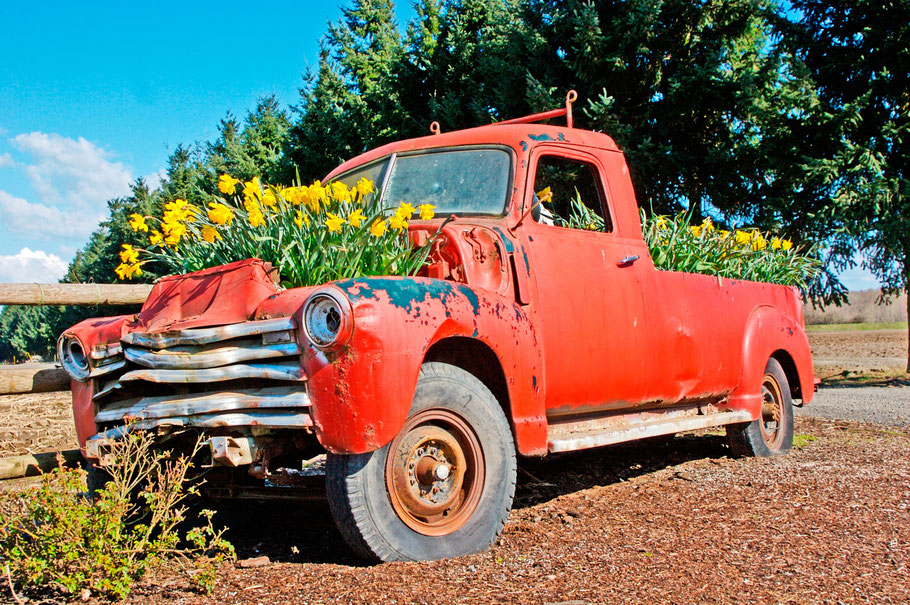 red truck with flowers by visualsspeak