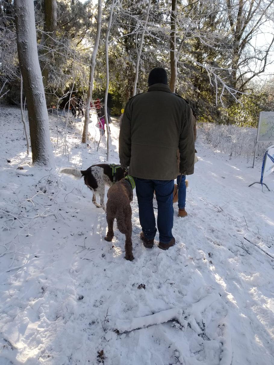Joni und Mirax im Schnee