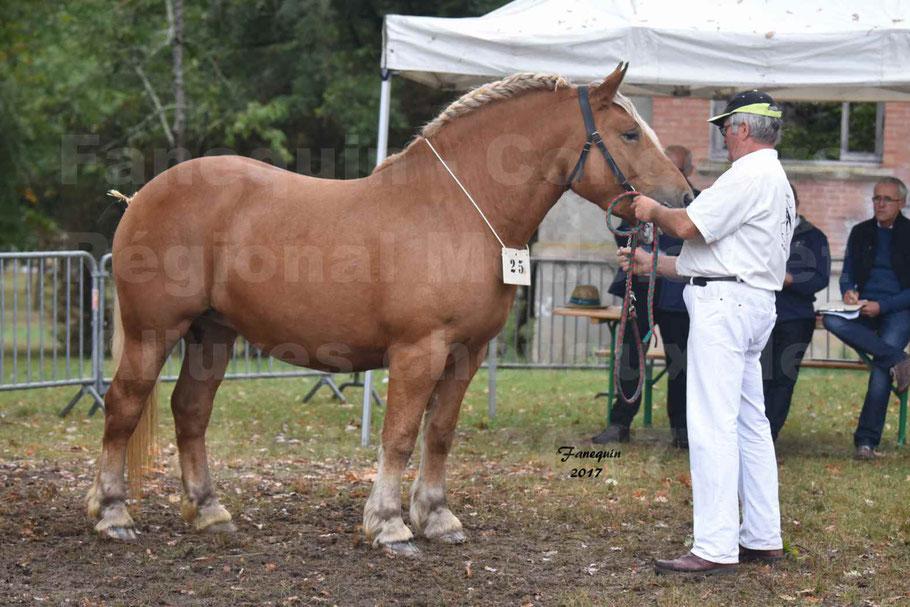 Concours Régional de chevaux de traits en 2017 - Trait COMTOIS  - EGLANTINE DE BENS