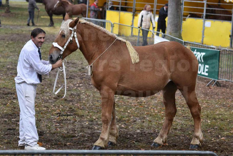 Concours Régional de chevaux de traits en 2017 - Trait COMTOIS - FRISBY DE GRILLOLES