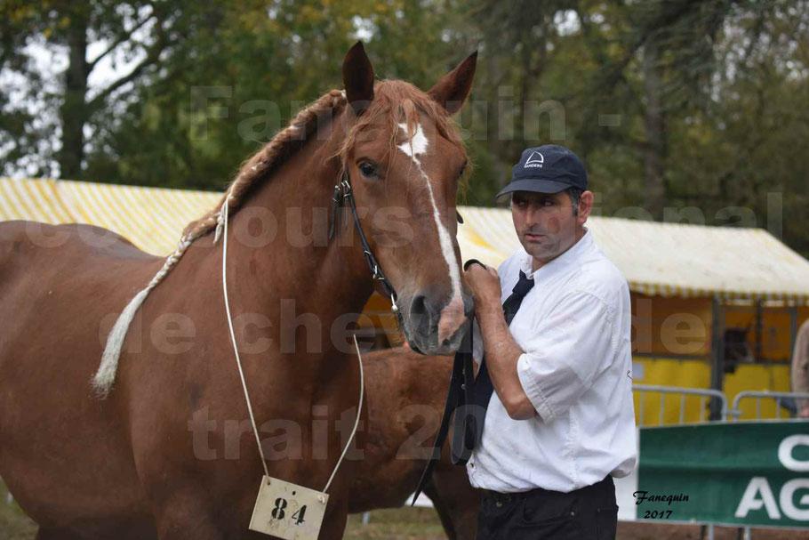 Concours Régional de chevaux de traits en 2017 - Jument & Poulain Trait BRETON - BEGONIA