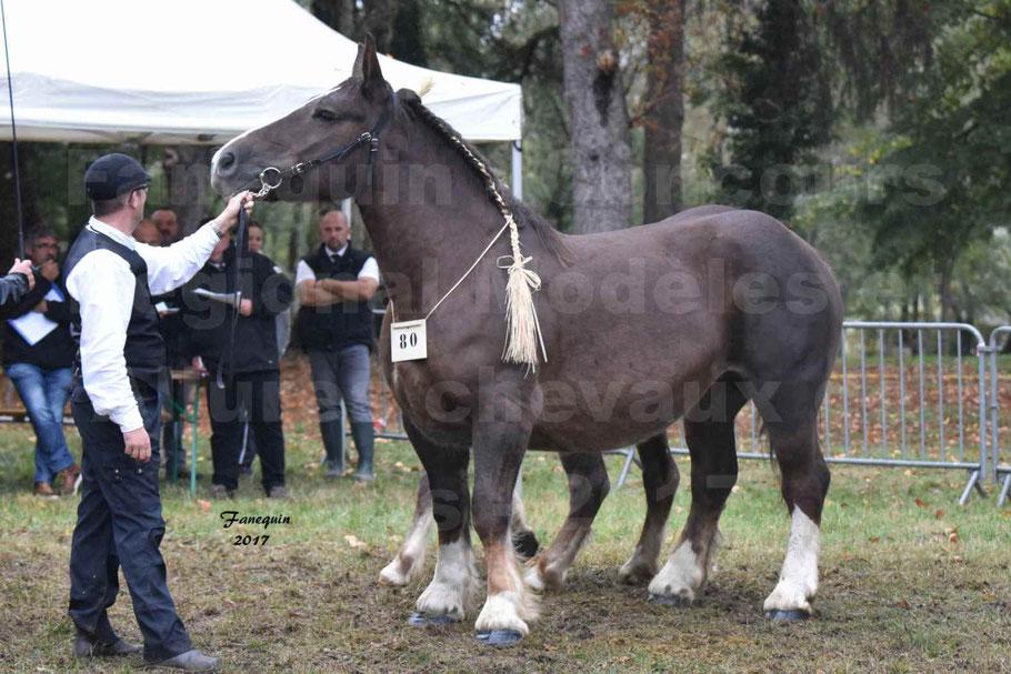 Concours Régional de chevaux de traits en 2017 - Jument & Poulain Trait BRETON - DIANE 18